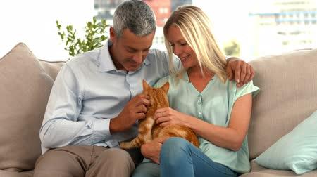 imbir : Happy couple with their cat in ultra hd format