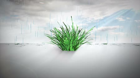 crescimento : Digital animation of Environmental concept with copy space