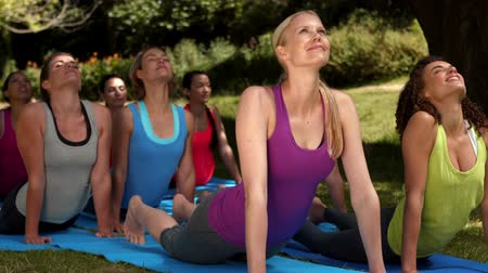 atletismo : In high quality format fitness group doing yoga in park on a sunny day