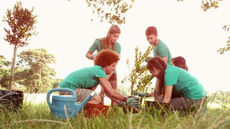 dobrovolník : In slow motion happy friends gardening for the community on a sunny day