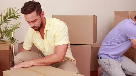 condomínio : Men preparing relocation in an apartment Stock Footage