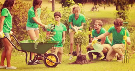 sociedade : Happy friends gardening for the community on a sunny day