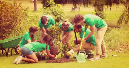 dobrovolník : Happy friends gardening for the community on a sunny day