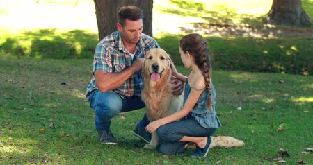 animais e animais de estimação : Father and daughter with their pet dog in the park on a sunny day