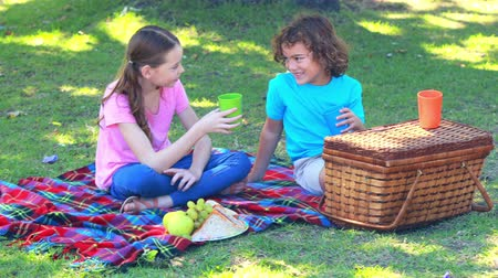 пикник : Happy children having picnic in park on a sunny day