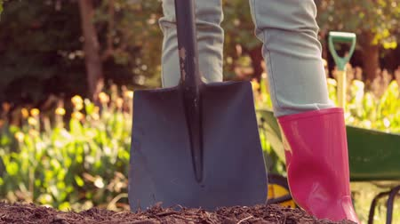 Łopata : Woman wearing pink rubber boots using shovel in her garden in slow motion