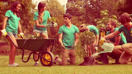 wolontariat : Happy group of volunteers gardening in the park in slow motion Wideo