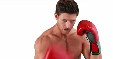 boxe : Serious muscular with gloves boxer practising on white background