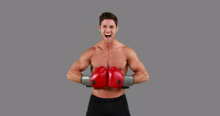 gritar : Shirtless angry boxer with gloves against grey background