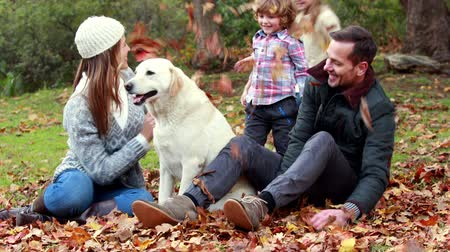 autumns : Family with their dog on autumns day in park in high quality