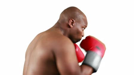 elszigetelt fekete : Serious muscular boxer with gloves practising on white background