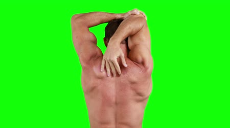 бицепс : Muscular man stretching his arms on green background