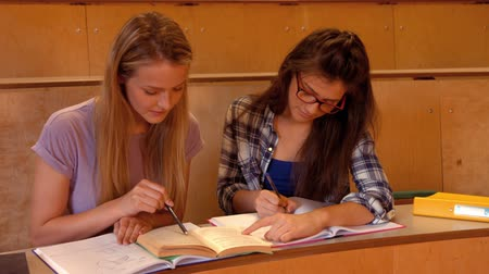 sınıf : Two students working together in class