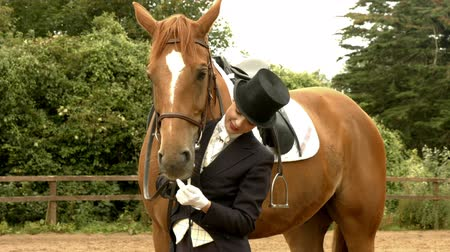 terbiye : Dressage rider with her horse in high quality format