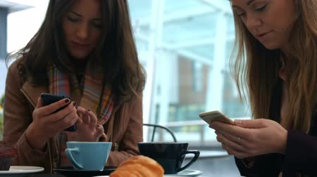 smartfon : Pretty friends enjoying coffee in cafe using phones in high quality format Wideo