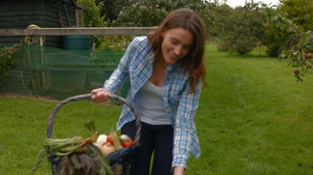 farmer animals : Pretty young woman with a basket of vegetables petting a dog outdoors Stock Footage