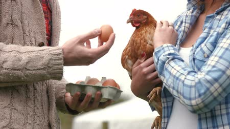 self sufficiency : Young couple holding hen and eggs in the garden