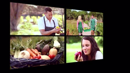 organic : Collage of organic food with people having a healthy life
