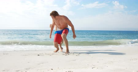 transportar : Father piggy-backing his son on the beach