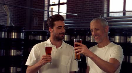 cervejaria : Brewery workers toasting with a pint in a beer factory Stock Footage