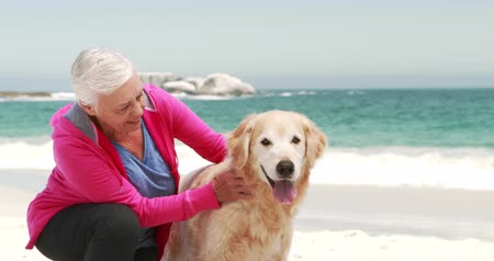 emekli : Old retired woman with dog on the beach Stok Video