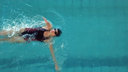 nadador : Fit woman swimming in the swimming pool at the leisure centre