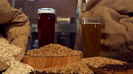 cervejaria : Panning shot of beers and hop grains in high definition