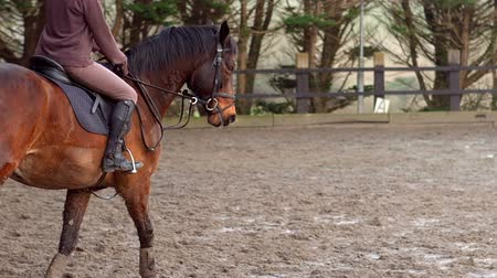 horse riding : Woman riding a horse outside in slow motion