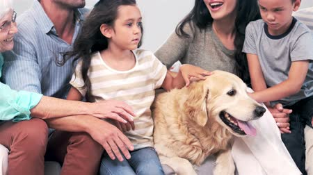 kobieta pies : Cute family petting a dog in the living room in slow motion