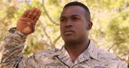 soldados : Portrait of soldier is doing salute in a park on a sunny day Stock Footage
