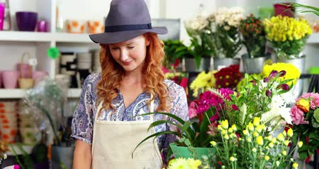 florista : Beautiful female florist standing in flower shop Stock Footage