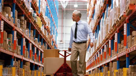 ellát : Manager walking with a pallet truck in warehouse