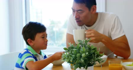 bonding : Father and son having breakfast at home Stock Footage