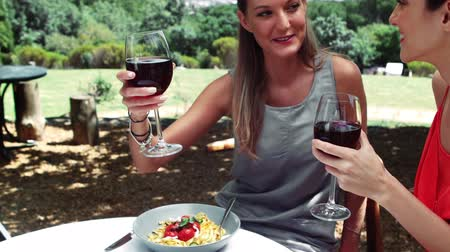drink industry : Smiling friends interacting with each other while drinking red wine in outdoor restaurant Stock Footage