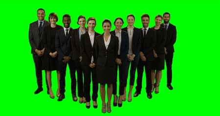 стоять : Group of smiling business executives standing  against green background