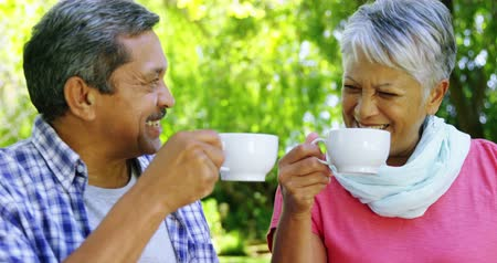 relação : Senior couple drinking tea at the park Stock Footage