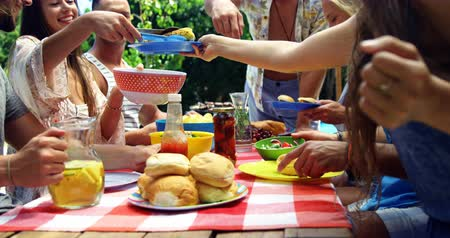 grillowanie : Group of friends passing the plate of meal at outdoors barbecue party near pool Wideo