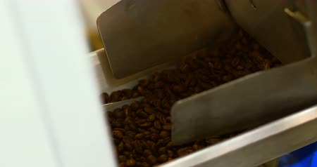 kafeterya : Man pouring coffee beans in weighing machine in coffee shop