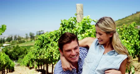 transportar : Romantic couple enjoying in vineyard on a sunny day Stock Footage
