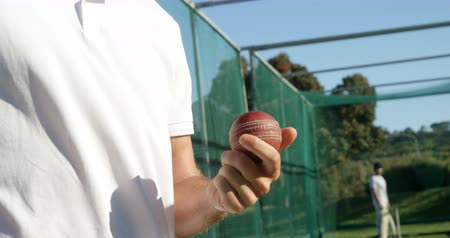 kriket : Cricket player holding ball during a practice session on cricket ground Stok Video