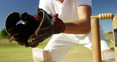 kriket : Wicket keeper collecting ball behind stumps on cricket field