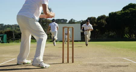wicket : Bowler running out a player during match on cricket field Stock Footage