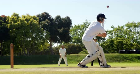 wicket : Wicket keeper taking a catch during match on cricket field Stock Footage