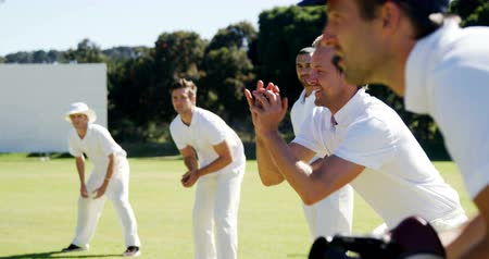 wicket : Cricket players doing catching practice on cricket field Stock Footage
