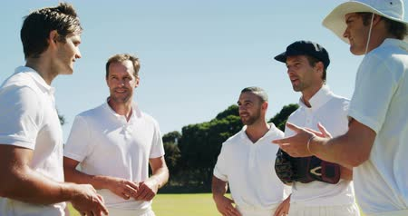 wicket : Cricket players into team discussion during match on cricket field Stock Footage