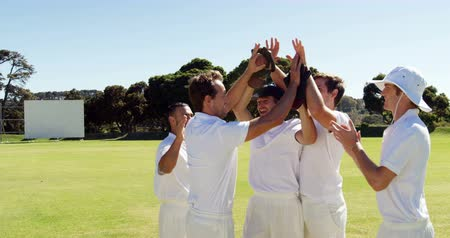 wicket : Cricket players giving high five during match on cricket field Stock Footage