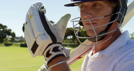 kriket : Confident batsman in helmet and holding bat on cricket field