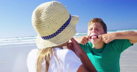 despreocupado : Siblings having fun together at beach on a sunny day