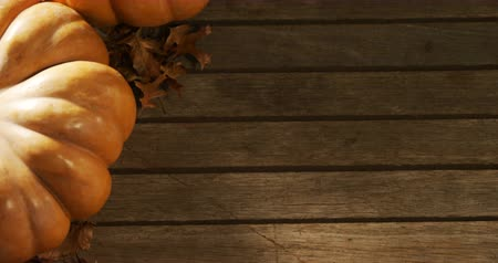 dynia : Close-up of halloween pumpkin with maple leaf on a wooden table 4k