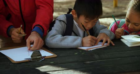 escrever : Kids and teacher taking notes on a field trip in the forest 4k